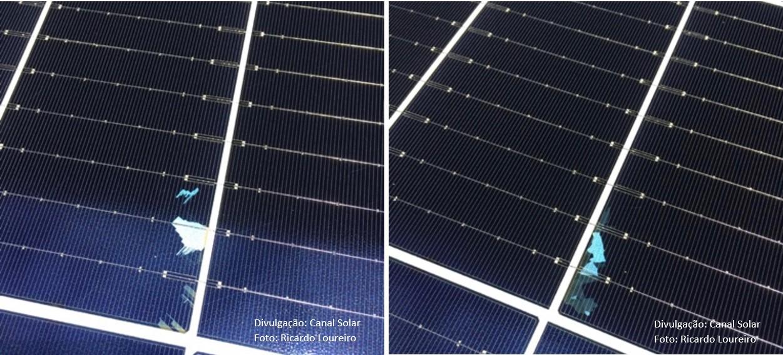 Figura 5: Aspectos de células cast-mono em módulos fotovoltaicos disponíveis comercialmente. As células são praticamente monocristalinas, mas podem existir algumas manchas resultantes do fatiamento de grãos policristalinos. Fotos: Ricardo Loureiro/Crivan Solar Energy