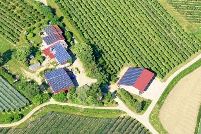Energia solar em propriedades rurais cresce 120% no 1º semestre de 2020