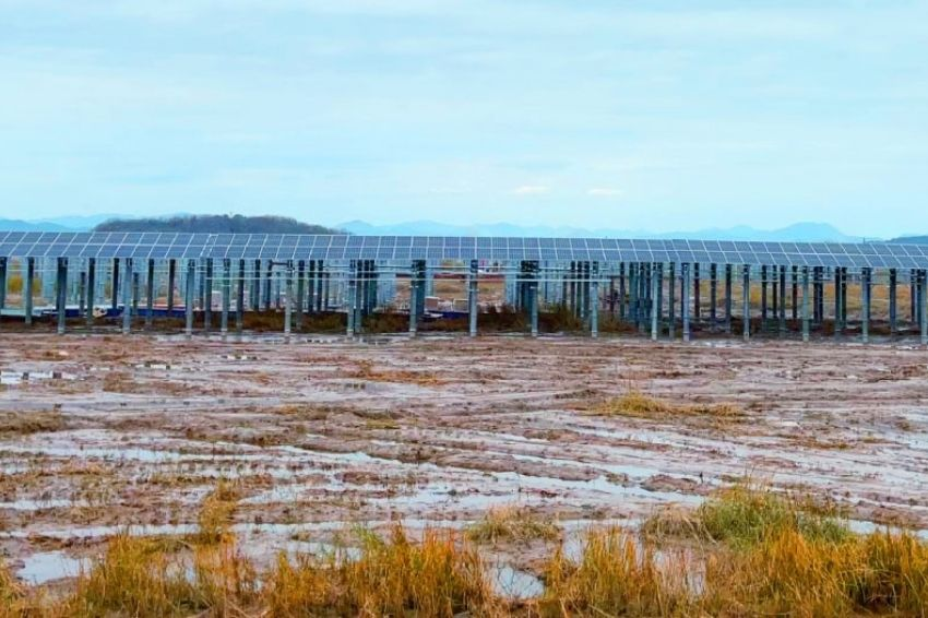 Solis fornece inversores para usina de 300 MW instalada em planícies de maré