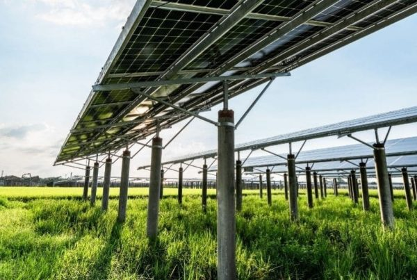 05-03-21-canal-solar-Fabricantes de trackers aprovam compatibilização completa com painéis de 210mm