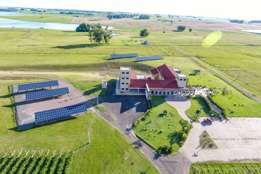Vinícola no RS foi a primeira da América Latina a usar energia solar