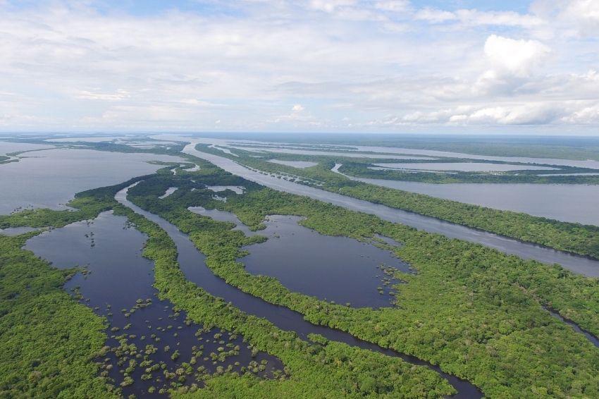 Projeto Amazônia 4.0 prevê exploração sustentável da biodiversidade