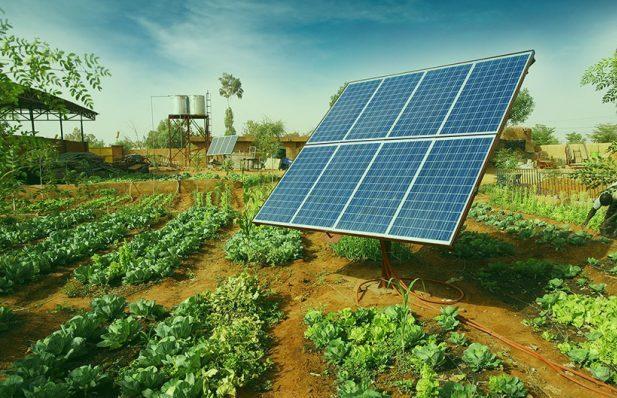 Capacidade instalada de solar cresce mais de 1,3 mil vezes no setor rural em 5 anos