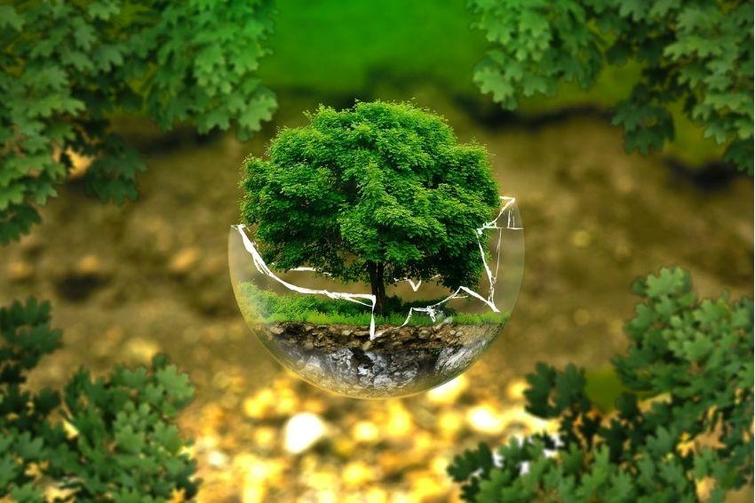 ESG: o que é e por que passou a ser importante para as empresas?