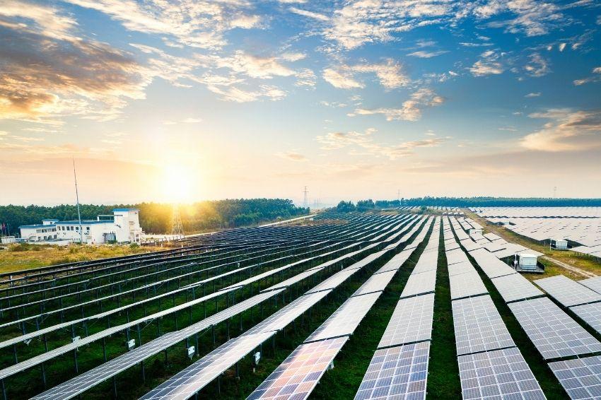Parques solares: uma tendência entre grandes empresas