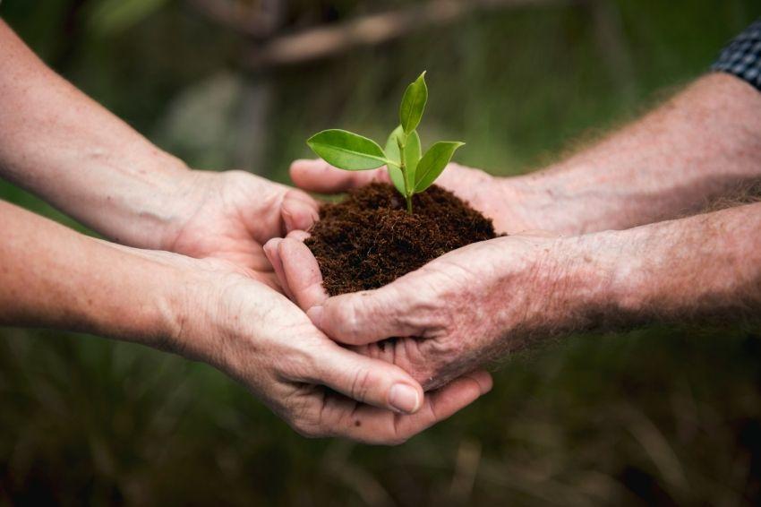Recuperação verde das cidades depende do estímulo do governo federal
